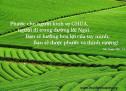Lời Chúa Mỗi Ngày: Thi Thiên 128:1-2
