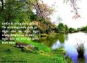 Lời Chúa Mỗi Ngày: Thi Thiên 23:1-2