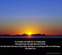 Lời Chúa Mỗi Ngày: Thi Thiên 30:5