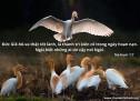 Lời Chúa Mỗi Ngày: Na-hum 1:17