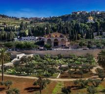Thánh Ca: Khuya Nay Trên Đỉnh Núi Ô-li-ve