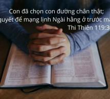 Lời Chúa Mỗi Ngày: Thi Thiên 119:30