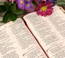 Gia Đình Được Chúa Yêu