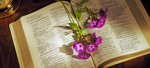 Tìm Hiểu Thánh Kinh: Giu-đe – Chương 1 – Phần 5