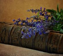 Tìm Hiểu Kinh Thánh: Sách Tít